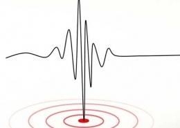 Gefühle sind Seismographen