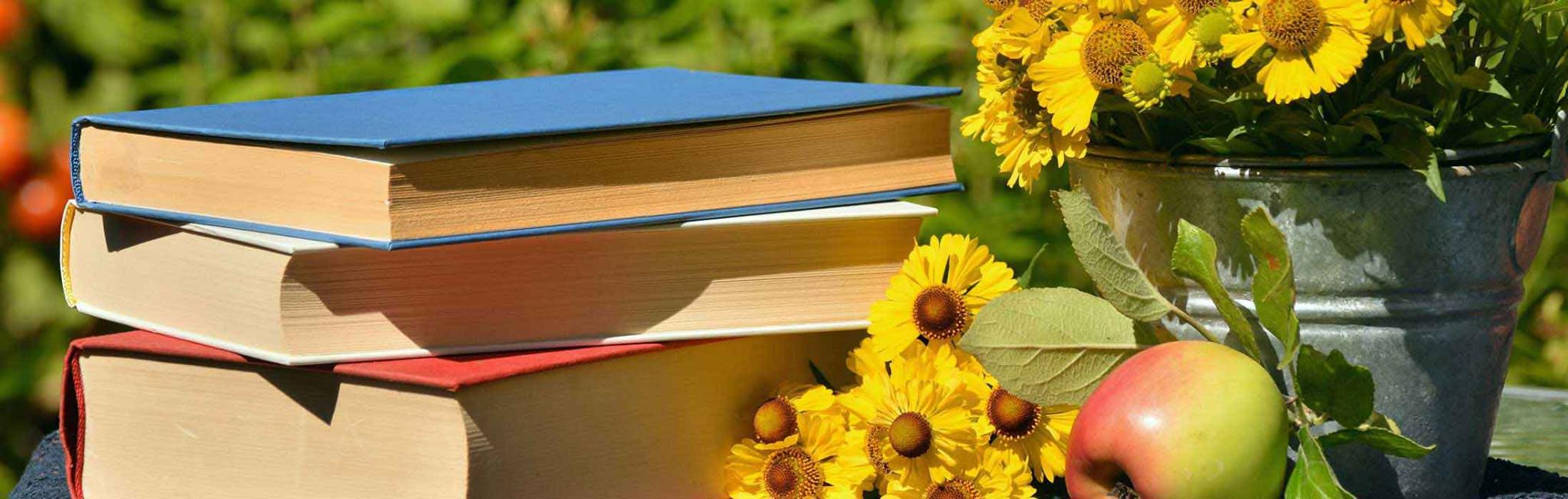 Onlineshop mit Büchern und Onlinekursen
