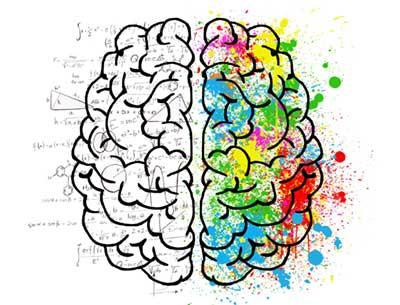 Intuition, Schnelles Denken, langsames Denken