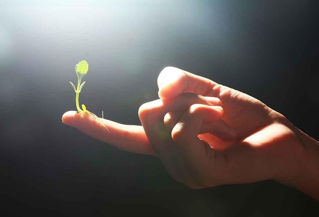 Selbstverwirklichung, Leben in die Hand nehmen